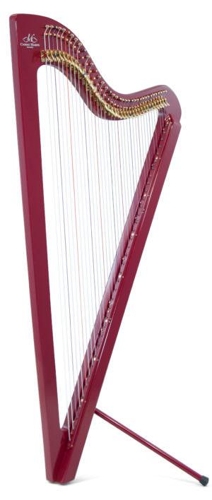 Electro Paraguayan Harp